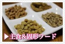 フクロモモンガの主食とフード